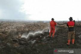 Wah, 148 titik panas terpantau di Riau