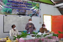 Pemprov Gorontalo dorong petani budidayakan tanaman porang