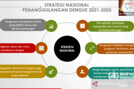 Tiga program Kemenkes perkuat strategi penanggulangan dengue