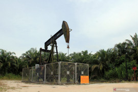 Harga minyak alami penurunan karena peningkatan COVID-19