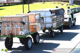 BBKSDA Papua terima translokasi satwa dari  Jogjakarta dan Jakarta