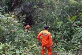 Basarnas cari lansia 60 tahun hilang di hutan