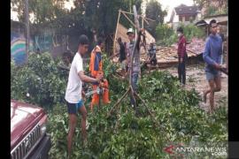 BNPB: 152 jiwa terdampak angin kencang di Kota Cimahi