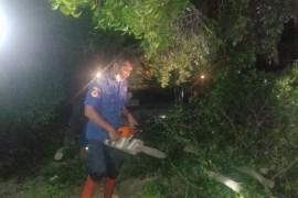 Lima rumah di Bandarlampung rusak diterjang angin puting beliung