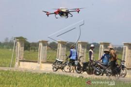 Uji Coba Drone Untuk Pertanian Page 1 Small
