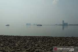 DKI kemarin, Deflasi limbah parasetamol Teluk Jakarta