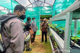 """Duren Tiga uses RPTRA as a wine center """"urban farming"""""""