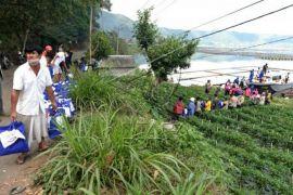 Distribusi bantuan warga terdampak gempa