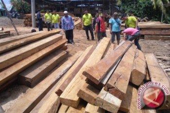 Kasus ilegal logging di Ketapang akan segera disidangkan