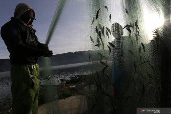 "Konsep ""speectra"" diperkenalkan untuk selamatkan ikan endemik"