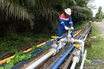 Kadin West Kalimantan Chapter requests government to soon build gas pipeline in Trans-Kalimantan