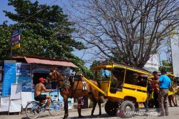PHRI akui dana hibah pemerintah dapat selamatkan industri pariwisata