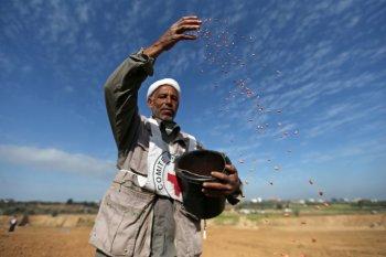 Israel tutup perlintasan Gaza setelah Palestina kirim balon pembakar