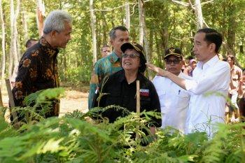 Presiden ingatkan target penurunan Gas Rumah Kaca Indonesia