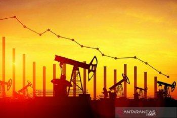 Harga minyak anjlok 5 persen, bukukan kerugian mingguan ke-5 beruntun