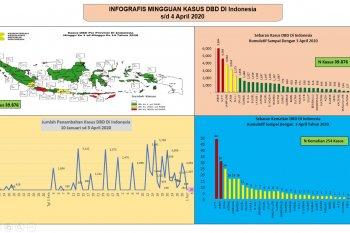 Waspada DBD, 254 jiwa meninggal dunia di tengah pandemi COVID-19