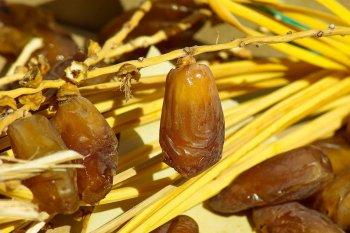Puasa syawal bagus bagi sistem cerna adaptasi usai Ramadhan