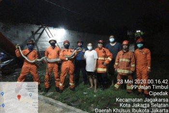 Sanca batik dalam paralon dievakuasi Damkar Jaksel pada Kamis dini hari
