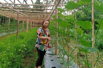 Sentrum Agraris Lotta Bantu Pengembangan Komoditas Pangan