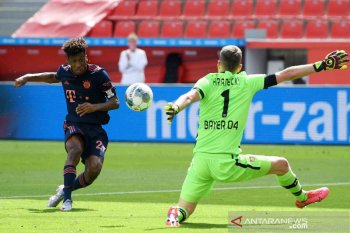 Klasemen Liga Jerman: Bayern dekati gelar juara