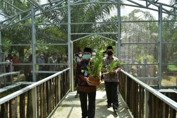 Gubernur resmikan penangkaran anggrek yang diselamatkan dari hutan saat karhutla