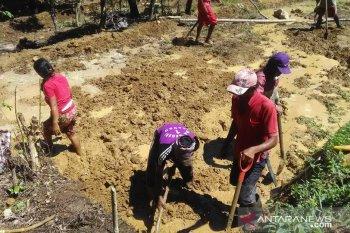 Kemendagri sinergikan kerja sama daerah wujudkan ketahanan pangan