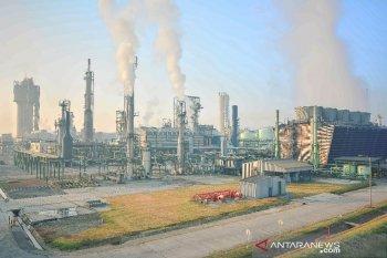 Pupuk Kujang optimistis mampu bersaing menyusul penyesuaian harga gas
