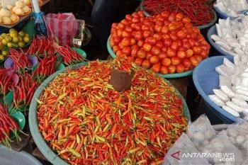 Harga cabai di pasar Ambon naik