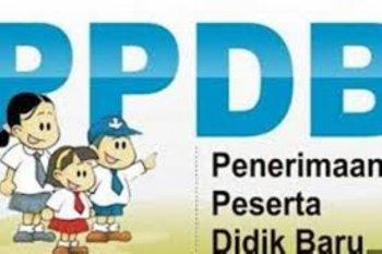 Dinas Pendidikan Kota Jambi lakukan verifikasi peserta PPDB SMP