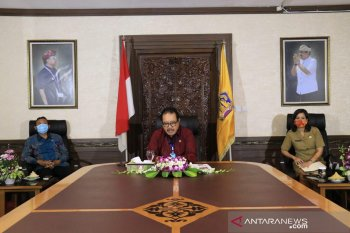 Wagub yakinkan India terkait kesiapan pariwisata Bali
