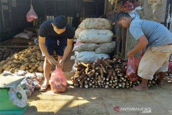 Pedagang ubikayu di Kota Bogor