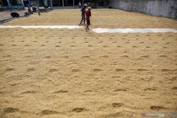 Pemkab Tangerang sediakan beras 1,09 juta ton selama pandemi COVID-19