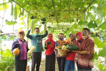 Kalbar gaungkan cinta produk pangan lokal