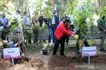 Menteri LHK Siti Nurbaya dorong perhutanan sosial untuk kesejahteraan masyarakat