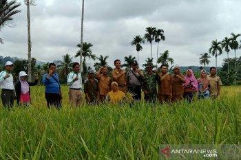 Sebanyak 447 petani Mukomuko terima pembagian kartu tani