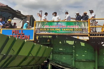 PG Bungamayang PTPN VII Mulai Buka Giling