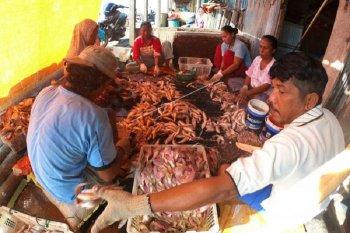 Pengrajin ikan asin gulamah  di Tanjabtim