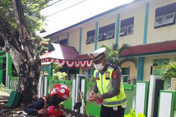 246 kendaraan di Halut terjaring razia Patuh