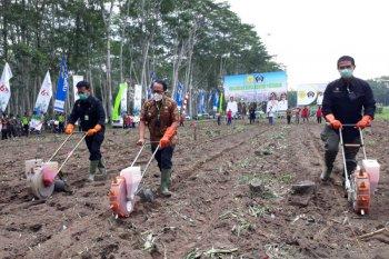 Mentan Syahrul Yasin Limpo semangati petani dan tanam jagung di Blitar