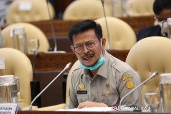 Komisi IV DPR setujui pagu anggaran Kementan Rp21,83 triliun untuk 2021