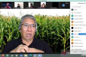 Dosen IPB: pertanian tumbuh 2,19 persen di tengah pandemi