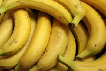 Buah pisang disebut mampu mengatasi diare