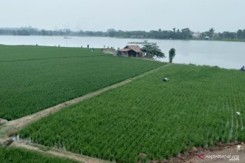 Bantuan ratusan botol pupuk cair disalurkan untuk petani Karawang