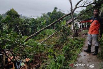 Longsor sebabkan enam rumah dan satu mushalla rusak di Sukabumi