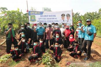 KNPI Tangerang bentuk kelompok pemuda tani untuk dukung ketahanan pangan
