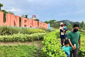 Pengunjung tetap dengan prtokol kesehatan di Kebun Raya Batam