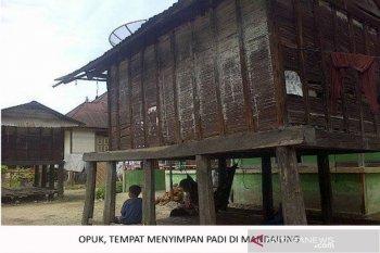 Pandemi dan kearifan lokal Mandailing