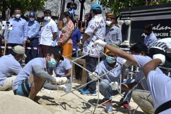 Program restorasi terumbu karang