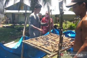 Dinas Perikanan Mukomuko dukung nelayan diversifikasi usaha
