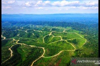 Menyeimbangkan pembangunan dan lingkungan
